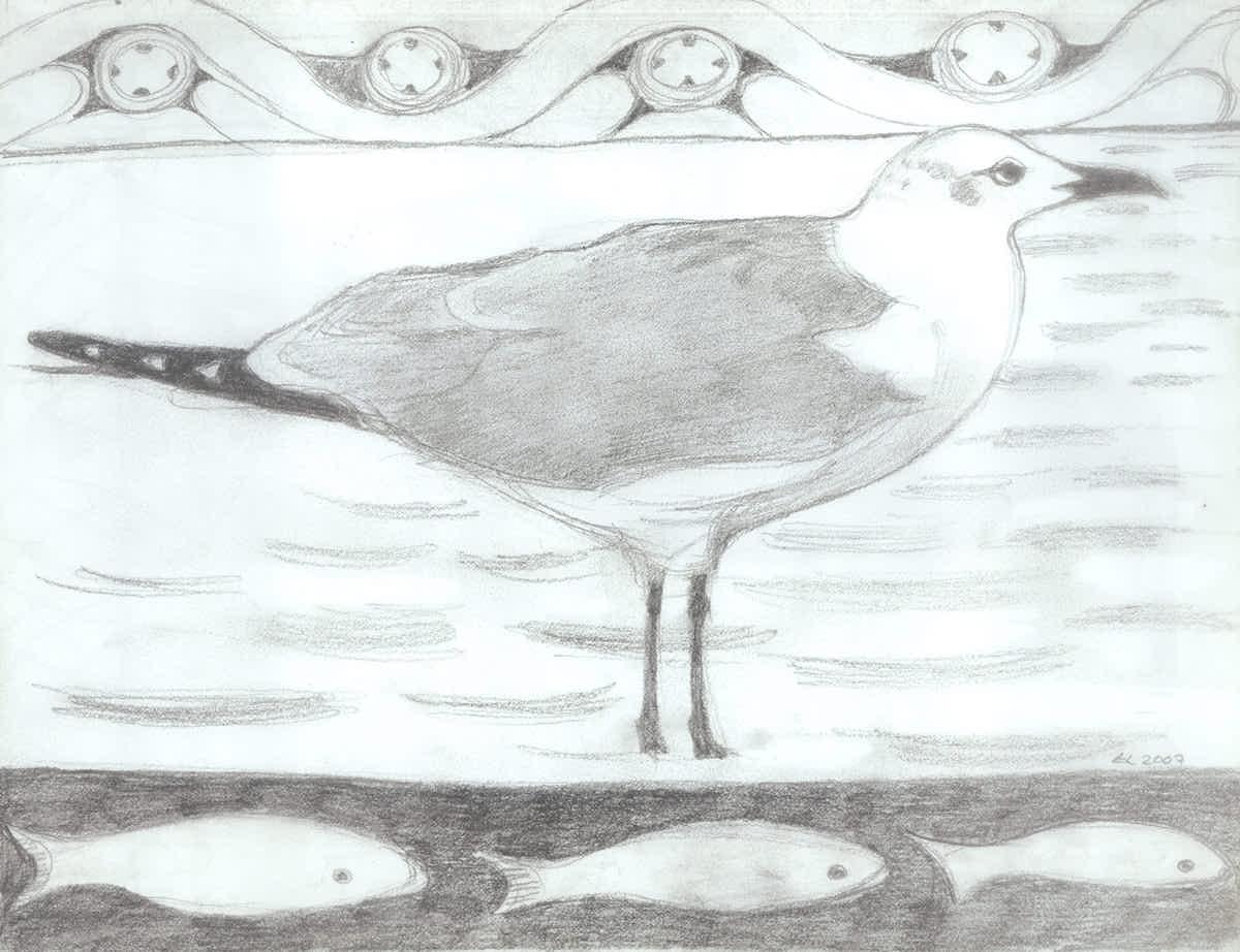 Seagull copy